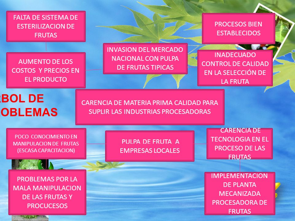 ALTO CONOCIMIENTO EN MANIPULACION DE FRUTAS ESCASO CONSUMO DE PULPAS DE FRUTAS NACIONALES FALTA DE TECNOLOGIA PARA EL PROCESO DE LAS FRUTAS TECNOLOGIA APLICADA DEL USO DE LA DESPULPADORAS PRODUCTOS A BASE DE PULPA FRUTAS NATURALES (JALEAS, papillas ).