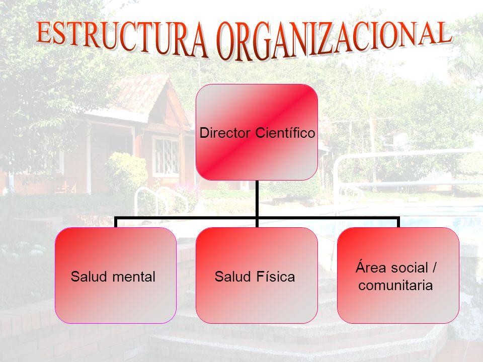 Director Científico Salud mental Salud Física Área social / comunitaria