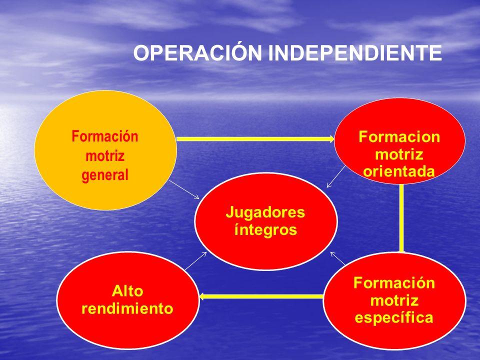 OPERACIÓN INDEPENDIENTE Alto rendimiento Formación motriz general Formacion motriz orientada Formación motriz específica Jugadores íntegros