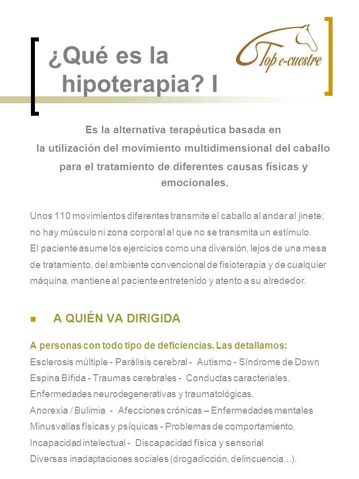 ¿Qué es la hipoterapia? I Es la alternativa terapéutica basada en la utilización del movimiento multidimensional del caballo para el tratamiento de di