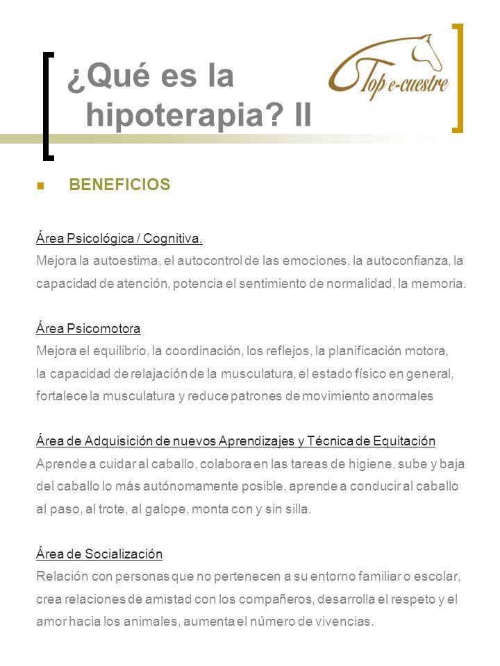 ¿Qué es la hipoterapia? II BENEFICIOS Área Psicológica / Cognitiva. Mejora la autoestima, el autocontrol de las emociones, la autoconfianza, la capaci