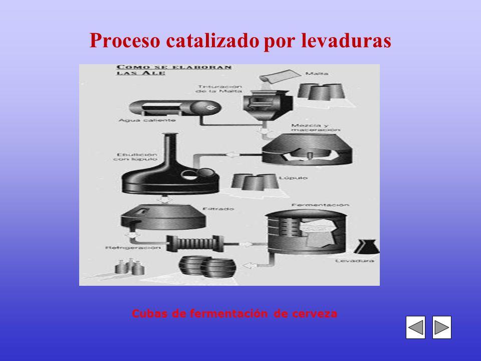 5.- Catalizadores e inhibidores Catalizador: Toda sustancia capaz de hacer evolucionar un sistema químico más rápidamente, sin alterar las propiedades