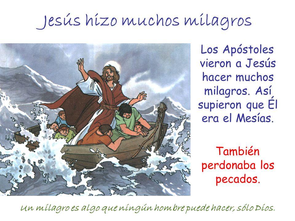 Jesús hizo muchos milagros Los Apóstoles vieron a Jesús hacer muchos milagros. Así supieron que Él era el Mesías. También perdonaba los pecados. Un mi
