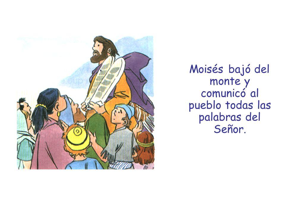 Un hombre sabio le preguntó a Jesús: Maestro, ¿cuál es el principal mandamiento.
