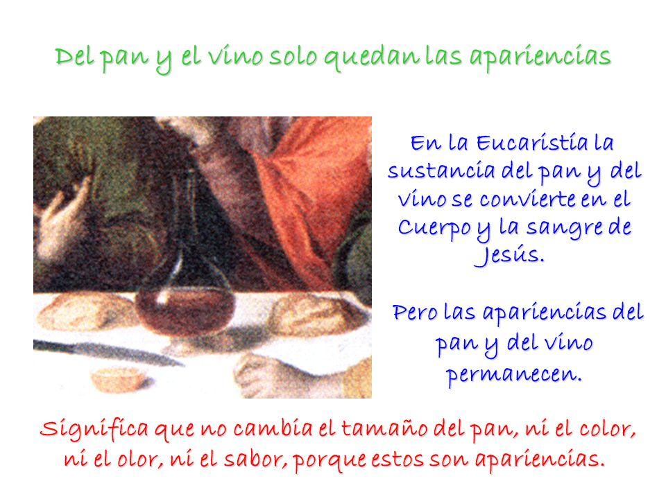 Del pan y el vino solo quedan las apariencias En la Eucaristía la sustancia del pan y del vino se convierte en el Cuerpo y la sangre de Jesús. En la E