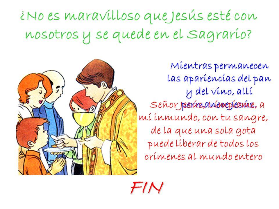 ¿No es maravilloso que Jesús esté con nosotros y se quede en el Sagrario? Mientras permanecen las apariencias del pan y del vino, allí permanece Jesús