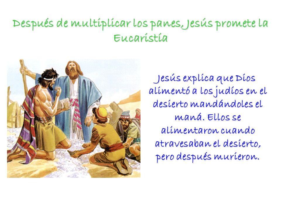 Jesús promete la Eucaristía Entre otras cosas nos dice: El pan que yo os daré es mi carne para la vida del mundo.