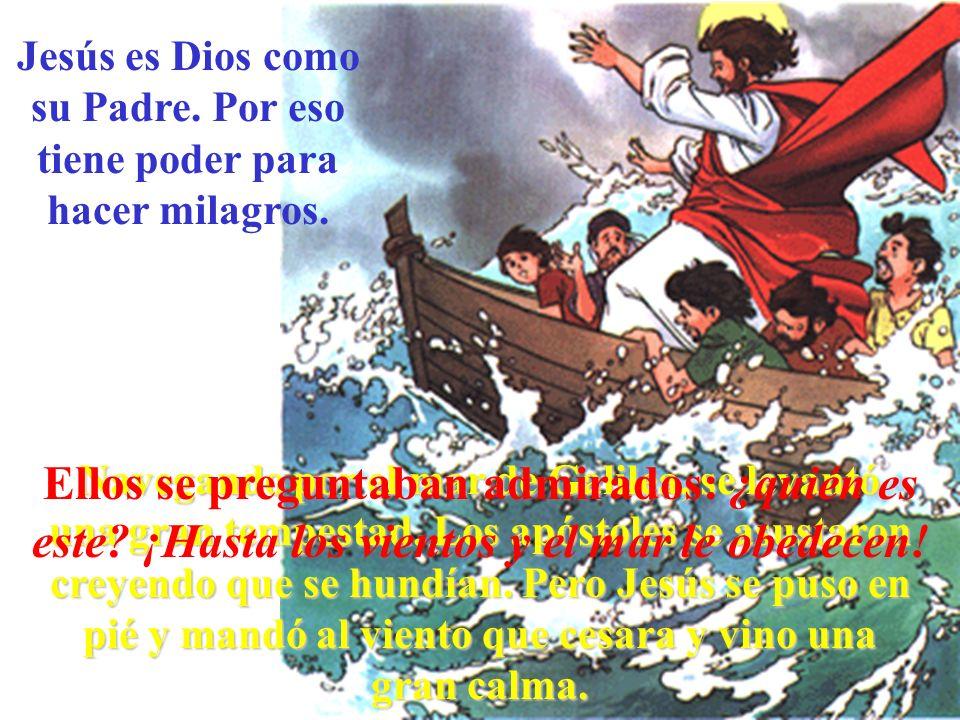 Jesús es Dios como su Padre. Por eso tiene poder para hacer milagros. Navegando por el mar de Galilea, se levantó una gran tempestad. Los apóstoles se