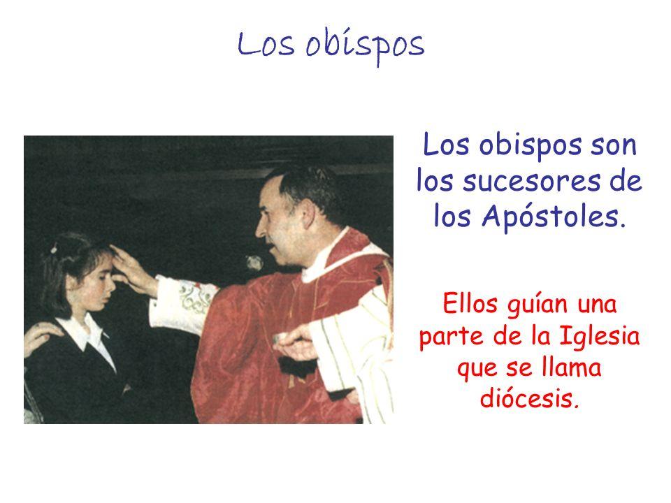 Los obispos Los obispos son los sucesores de los Apóstoles. Ellos guían una parte de la Iglesia que se llama diócesis.
