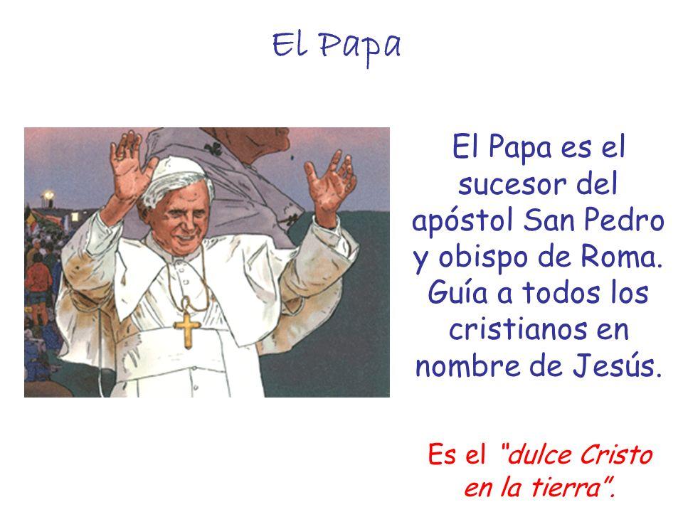 El Papa El Papa es el sucesor del apóstol San Pedro y obispo de Roma. Guía a todos los cristianos en nombre de Jesús. Es el dulce Cristo en la tierra.