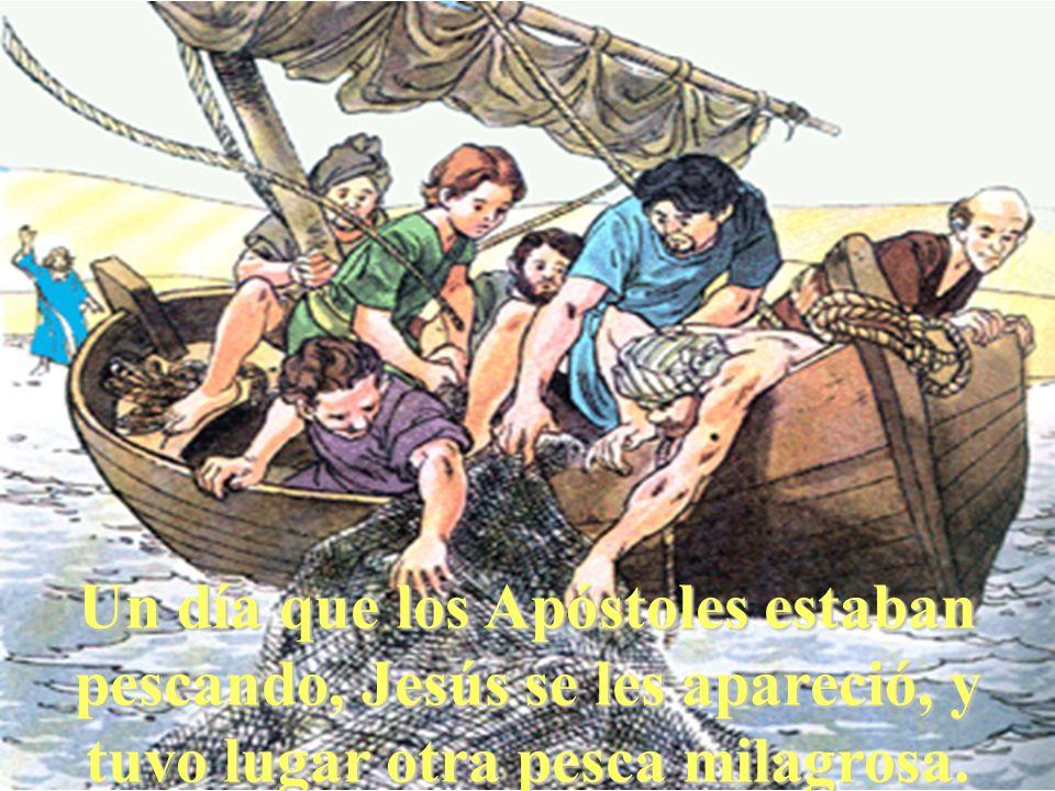 Un día que los Apóstoles estaban pescando, Jesús se les apareció, y tuvo lugar otra pesca milagrosa.