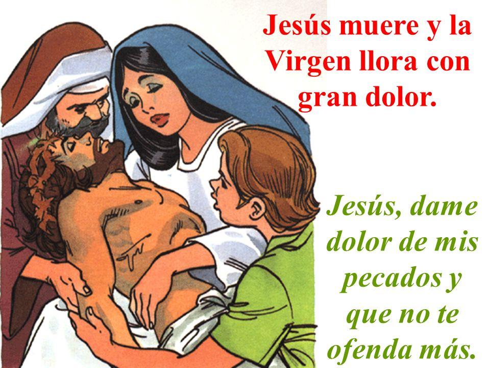 Jesús muere y la Virgen llora con gran dolor. Jesús, dame dolor de mis pecados y que no te ofenda más.