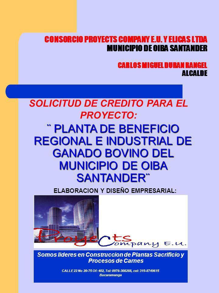 CONSORCIO PROYECTS COMPANY E.U.