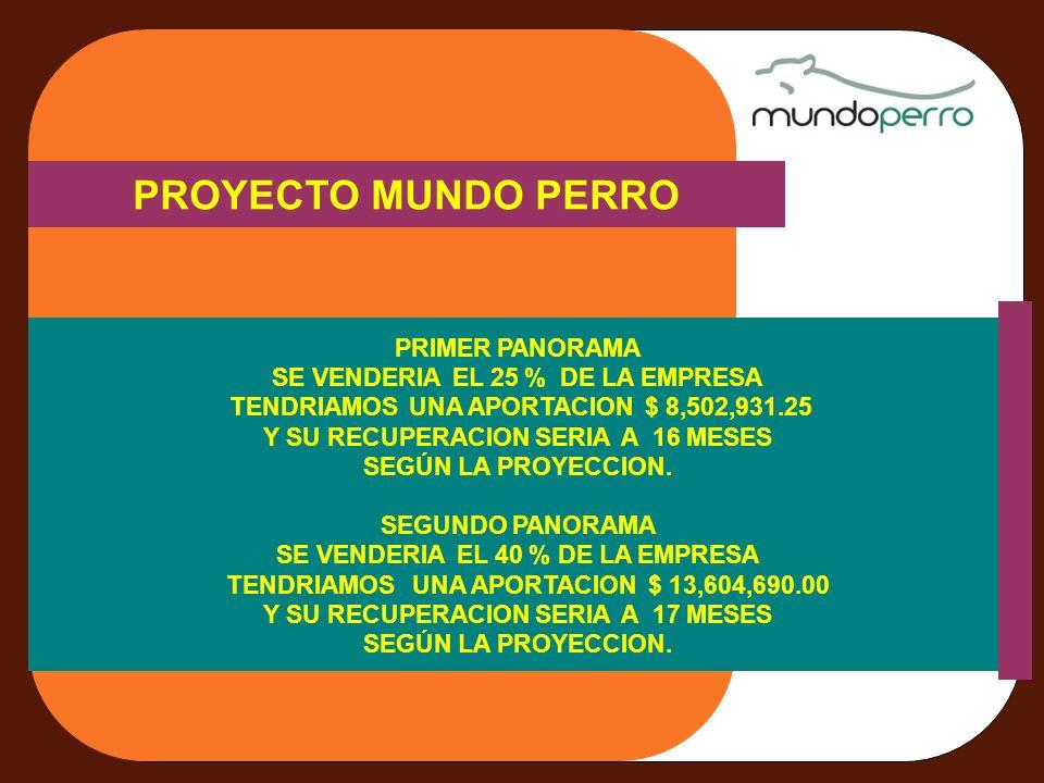 PROYECTO MUNDO PERRO PRIMER PANORAMA SE VENDERIA EL 25 % DE LA EMPRESA TENDRIAMOS UNA APORTACION $ 8,502,931.25 Y SU RECUPERACION SERIA A 16 MESES SEGÚN LA PROYECCION.