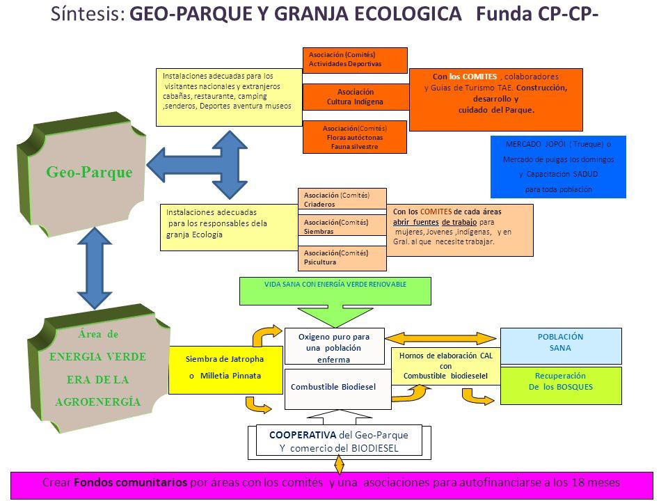 Síntesis: GEO-PARQUE Y GRANJA ECOLOGICA Funda CP-CP- 28/01/2014 Combustible Biodiesel Oxigeno puro para una población enferma Hornos de elaboración CAL con Combustible biodieselel POBLACIÓN SANA Recuperación De los BOSQUES COOPERATIVA del Geo-Parque Y comercio del BIODIESEL VIDA SANA CON ENERGÍA VERDE RENOVABLE Siembra de Jatropha o Milletia Pinnata Área de ENERGIA VERDE ERA DE LA AGROENERGÍA Geo-Parque Instalaciones adecuadas para los responsables dela granja Ecología Asociación (Comités) Criaderos Asociación(Comités) Siembras Asociación(Comités) Psicultura Con los COMITES de cada áreas abrir fuentes abrir fuentes de trabajo para mujeres, Jovenes,indígenas, y en Gral.