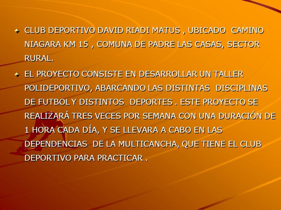 CLUB DEPORTIVO DAVID RIADI MATUS, UBICADO CAMINO NIAGARA KM 15, COMUNA DE PADRE LAS CASAS, SECTOR RURAL. EL PROYECTO CONSISTE EN DESARROLLAR UN TALLER