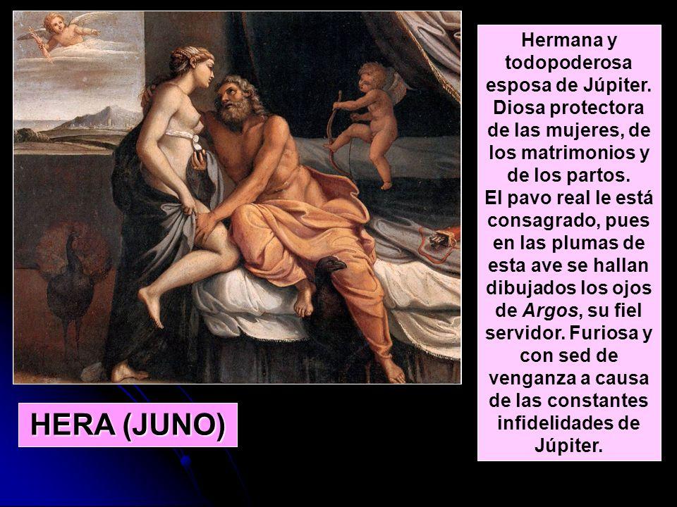 Hermana y todopoderosa esposa de Júpiter. Diosa protectora de las mujeres, de los matrimonios y de los partos. El pavo real le está consagrado, pues e