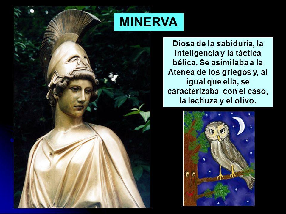MINERVA Diosa de la sabiduría, la inteligencia y la táctica bélica. Se asimilaba a la Atenea de los griegos y, al igual que ella, se caracterizaba con