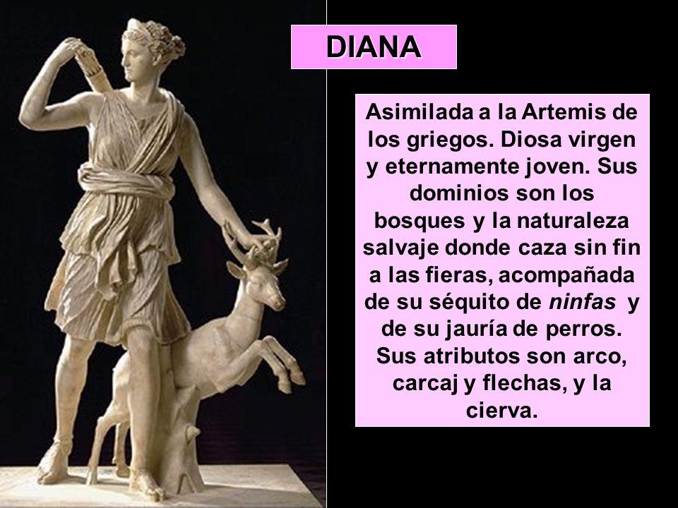 DIANA Asimilada a la Artemis de los griegos. Diosa virgen y eternamente joven. Sus dominios son los bosques y la naturaleza salvaje donde caza sin fin