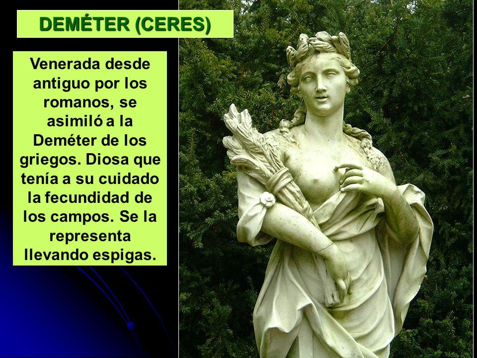 DEMÉTER (CERES) Venerada desde antiguo por los romanos, se asimiló a la Deméter de los griegos. Diosa que tenía a su cuidado la fecundidad de los camp