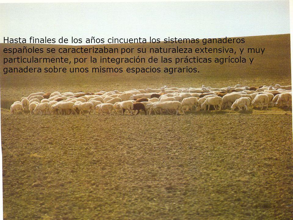 Hasta finales de los años cincuenta los sistemas ganaderos españoles se caracterizaban por su naturaleza extensiva, y muy particularmente, por la inte