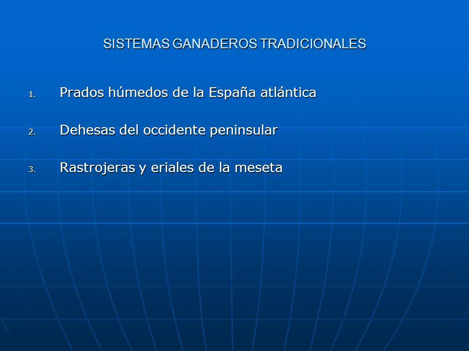 SISTEMAS GANADEROS TRADICIONALES 1. Prados húmedos de la España atlántica 2. Dehesas del occidente peninsular 3. Rastrojeras y eriales de la meseta