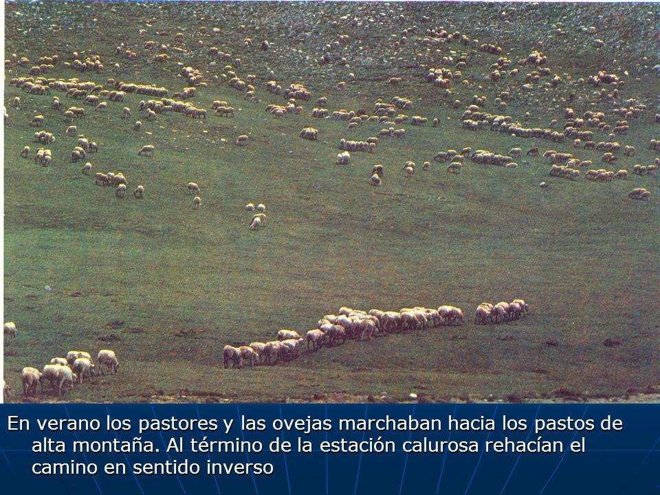 En verano los pastores y las ovejas marchaban hacia los pastos de alta montaña. Al término de la estación calurosa rehacían el camino en sentido inver