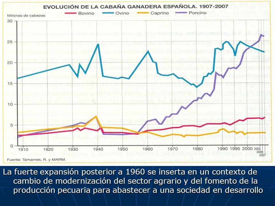 La fuerte expansión posterior a 1960 se inserta en un contexto de cambio de modernización del sector agrario y del fomento de la producción pecuaria p