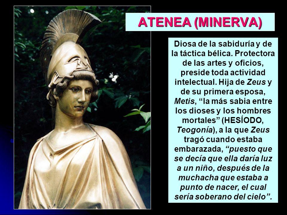 ATENEA (MINERVA) Diosa de la sabiduría y de la táctica bélica. Protectora de las artes y oficios, preside toda actividad intelectual. Hija de Zeus y d