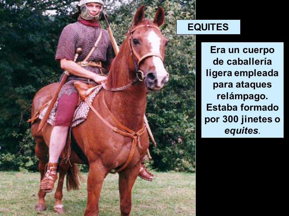 EQUITES Era un cuerpo de caballería ligera empleada para ataques relámpago. Estaba formado por 300 jinetes o equites.