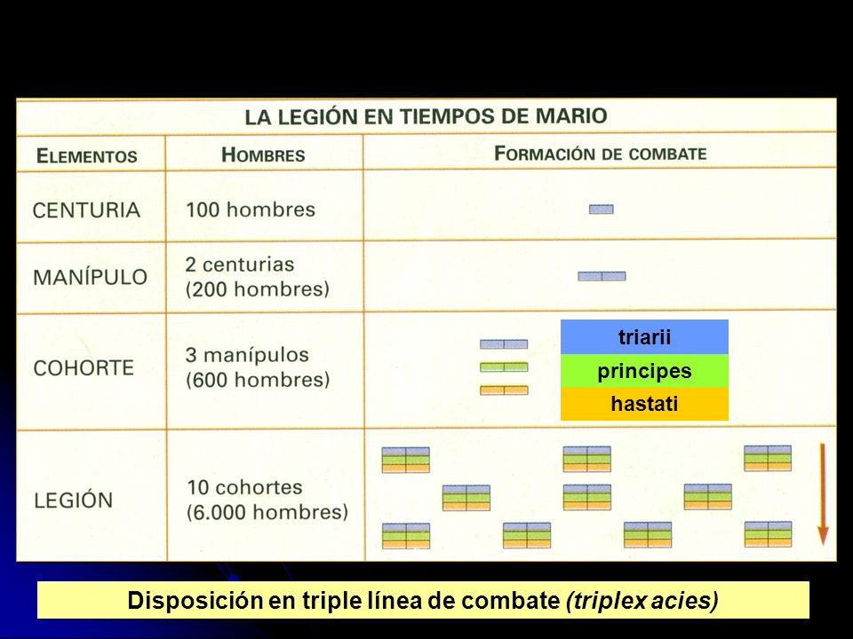 hastati principes triarii Disposición en triple línea de combate (triplex acies)