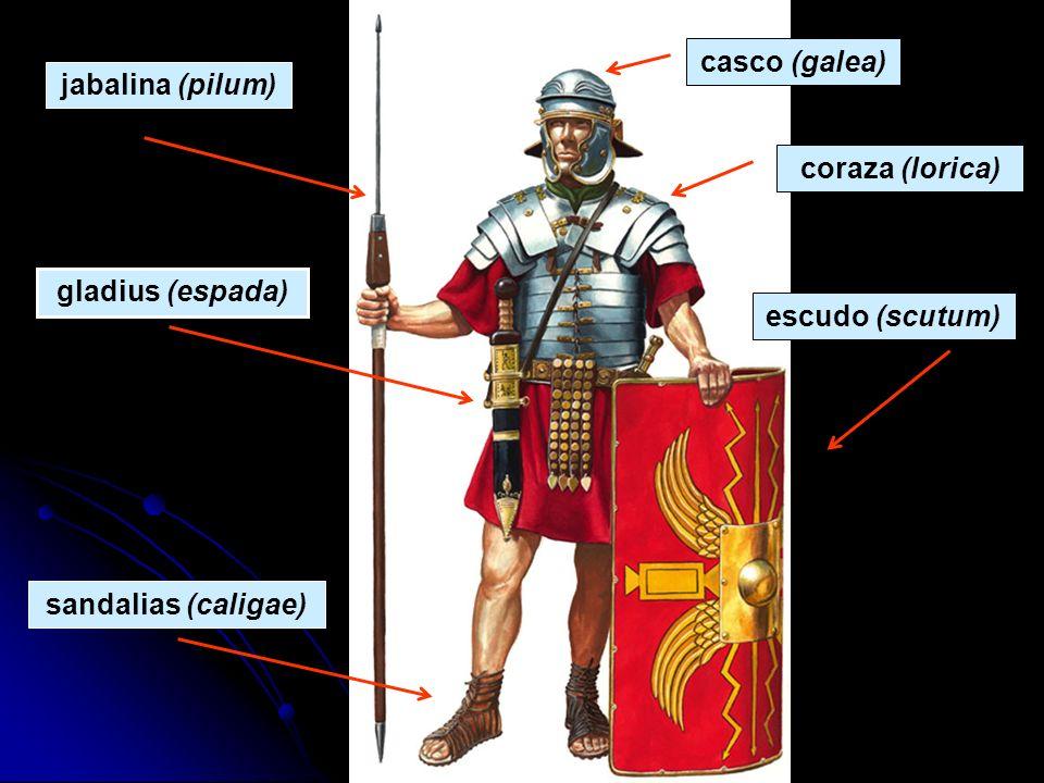 jabalina (pilum) casco (galea) coraza (lorica) escudo (scutum) gladius (espada) sandalias (caligae)