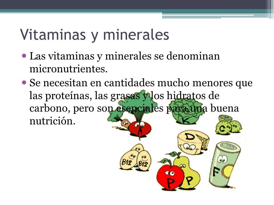 Vitaminas y minerales Las vitaminas y minerales se denominan micronutrientes. Se necesitan en cantidades mucho menores que las proteínas, las grasas y