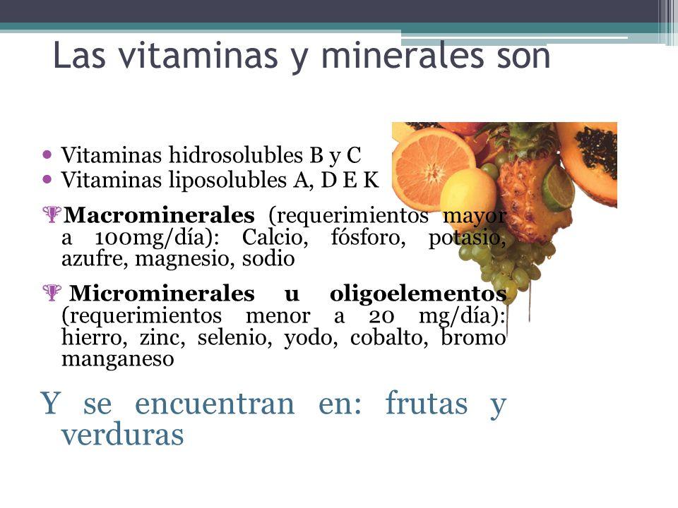 Las vitaminas y minerales son Vitaminas hidrosolubles B y C Vitaminas liposolubles A, D E K Macrominerales (requerimientos mayor a 100mg/día): Calcio,
