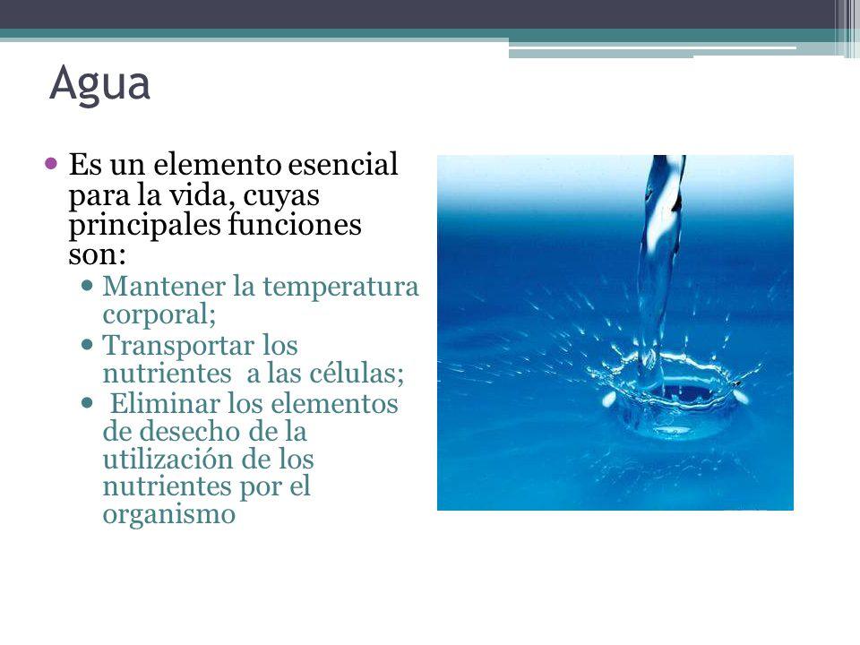 Agua Es un elemento esencial para la vida, cuyas principales funciones son: Mantener la temperatura corporal; Transportar los nutrientes a las células