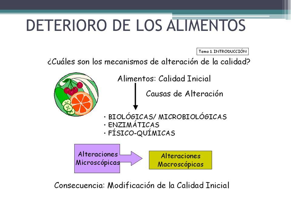 DETERIORO DE LOS ALIMENTOS