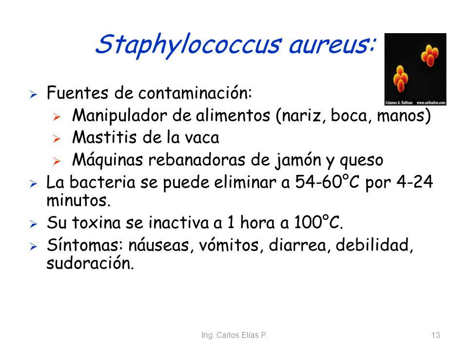 Ing. Carlos Elías P.13 Staphylococcus aureus: Fuentes de contaminación: Manipulador de alimentos (nariz, boca, manos) Mastitis de la vaca Máquinas reb