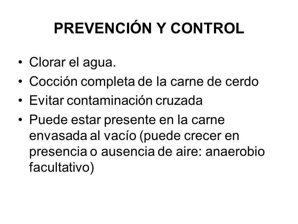 PREVENCIÓN Y CONTROL Clorar el agua. Cocción completa de la carne de cerdo Evitar contaminación cruzada Puede estar presente en la carne envasada al v