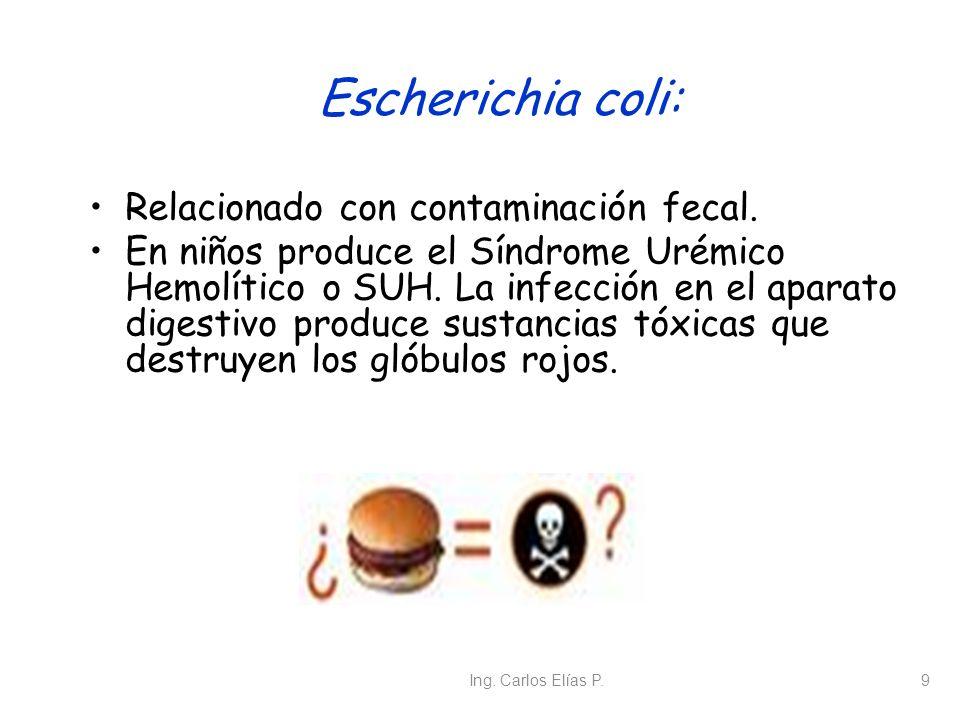 Ing. Carlos Elías P.9 Escherichia coli: Relacionado con contaminación fecal. En niños produce el Síndrome Urémico Hemolítico o SUH. La infección en el