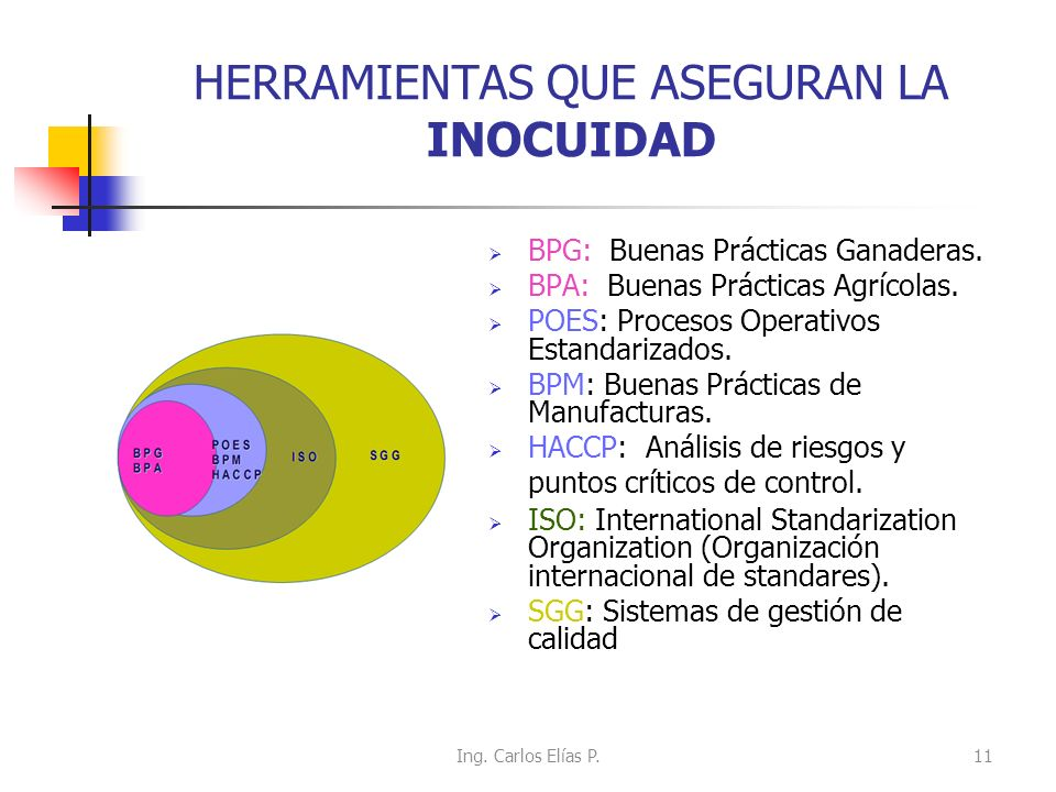 HERRAMIENTAS QUE ASEGURAN LA INOCUIDAD BPG: Buenas Prácticas Ganaderas. BPA: Buenas Prácticas Agrícolas. POES: Procesos Operativos Estandarizados. BPM