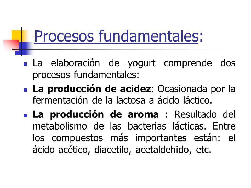 Procesos fundamentales: La elaboración de yogurt comprende dos procesos fundamentales: La producción de acidez: Ocasionada por la fermentación de la lactosa a ácido láctico.
