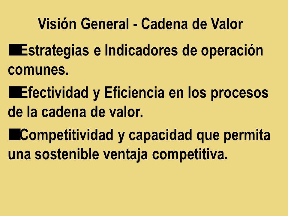 Estrategias e Indicadores de operación comunes. Efectividad y Eficiencia en los procesos de la cadena de valor. Competitividad y capacidad que permita