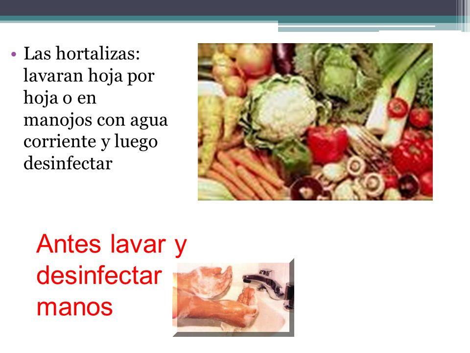 Las hortalizas: lavaran hoja por hoja o en manojos con agua corriente y luego desinfectar Antes lavar y desinfectar manos