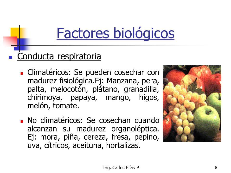 Ing. Carlos Elías P.8 Factores biológicos Conducta respiratoria Climatéricos: Se pueden cosechar con madurez fisiológica.Ej: Manzana, pera, palta, mel