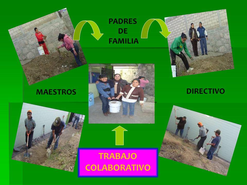 TRABAJO COLABORATIVO MAESTROS DIRECTIVO PADRES DE FAMILIA