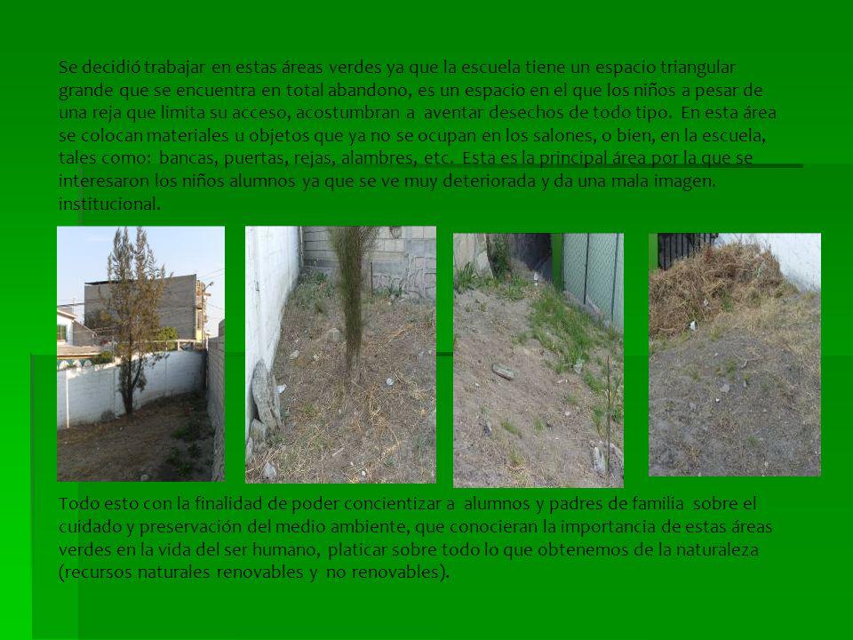 Se decidió trabajar en estas áreas verdes ya que la escuela tiene un espacio triangular grande que se encuentra en total abandono, es un espacio en el