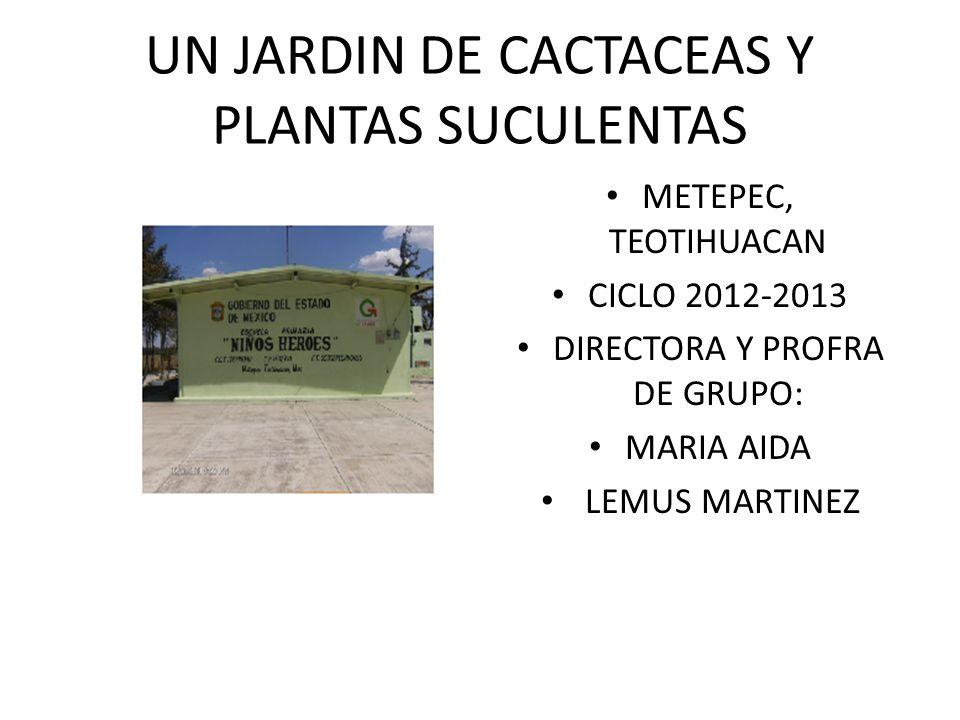 UN JARDIN DE CACTACEAS Y PLANTAS SUCULENTAS METEPEC, TEOTIHUACAN CICLO 2012-2013 DIRECTORA Y PROFRA DE GRUPO: MARIA AIDA LEMUS MARTINEZ