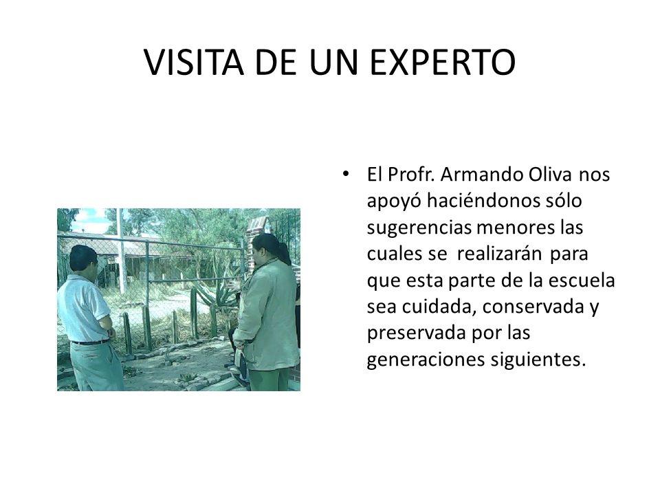 VISITA DE UN EXPERTO El Profr. Armando Oliva nos apoyó haciéndonos sólo sugerencias menores las cuales se realizarán para que esta parte de la escuela