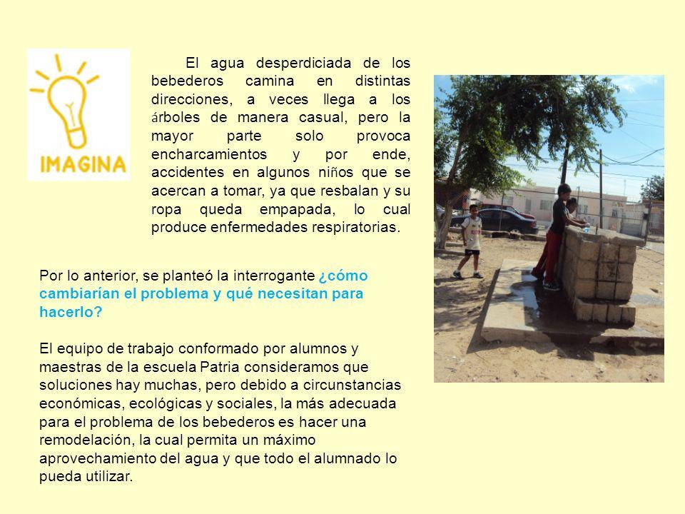 OBJETIVO Aprovechar el agua desperdiciada de los bebederos, mediante una remodelación utilizando botellas de vidrio desechables y crear un sistema de riego a los arboles.