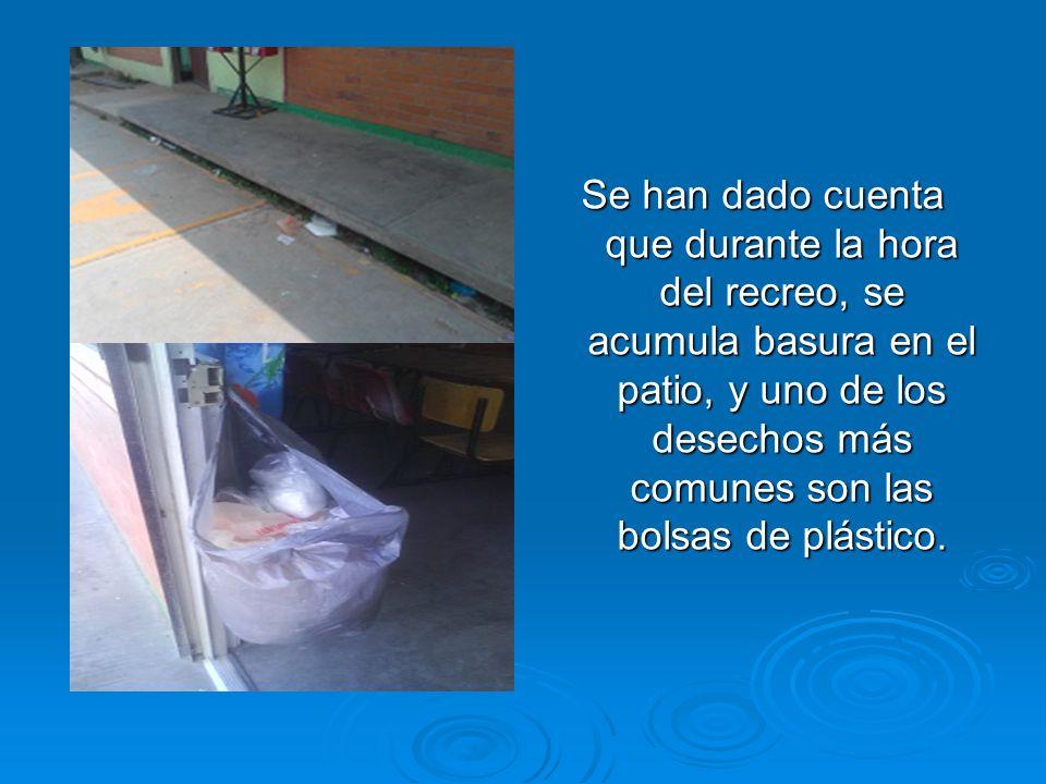 Se han dado cuenta que durante la hora del recreo, se acumula basura en el patio, y uno de los desechos más comunes son las bolsas de plástico.